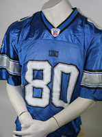 Detriot Lions 80 NFL Charles Rogers M Jersey