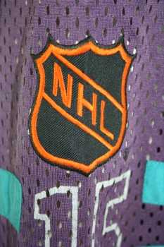 Anaheim Mighty Ducks jersey Campri NHL M