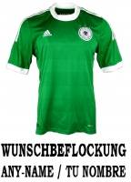 Adidas Germany DfB jersey 2012 away green men's S/M/L/XL/XXL/XXXL/2XL/3XL